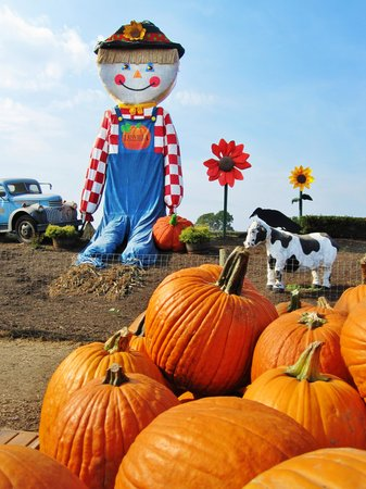 Linvilla Orchards: Pumpkinland