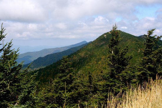 Mount Mitchell State Park: View from the top