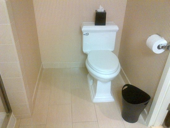 Sheraton Garden Grove - Anaheim South Hotel : Toilet
