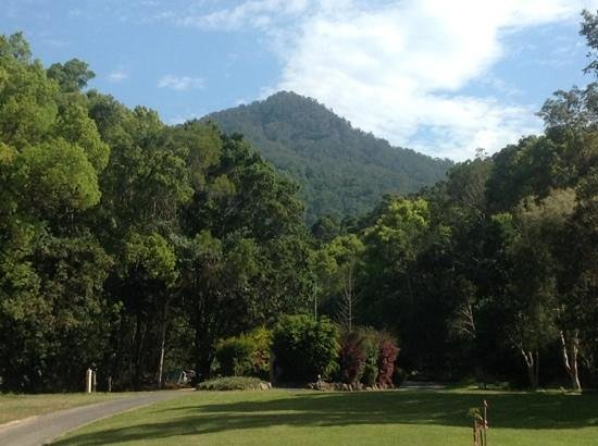 Mt Warning Rainforest Park: Park with Mt Warning in the background