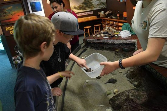 Virginia Living Museum : educational hands on exhibit with friendly staff members