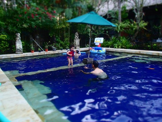 Sanur Beach Villas : other end of pool, 1 mtr deep small