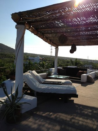Casa Contenta Bed & Breakfast: Roof deck