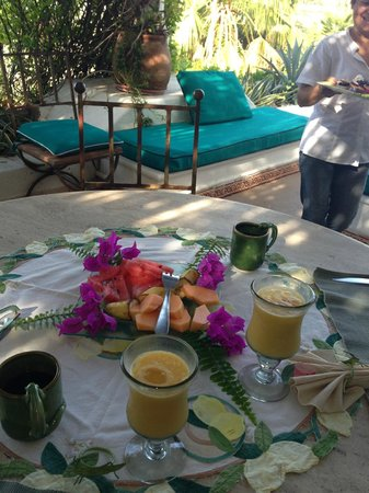 Casa Contenta Bed And Breakfast Cabo San Lucas
