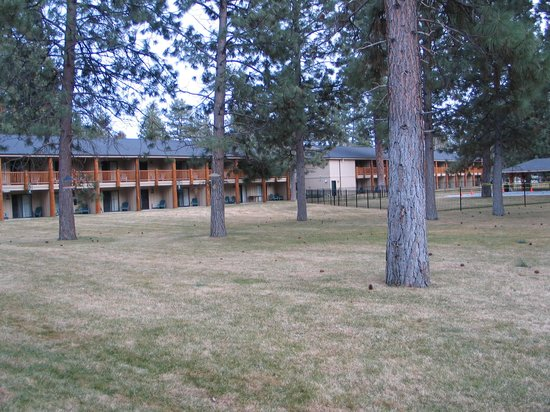 "Best Western Ponderosa Lodge: The ""Park"" outside your room"