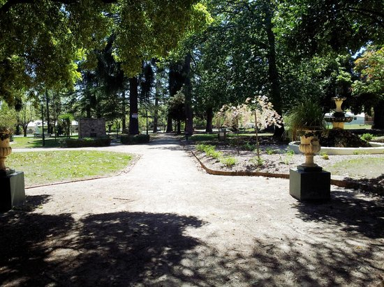 Sunny day in the town hall gardens 2012