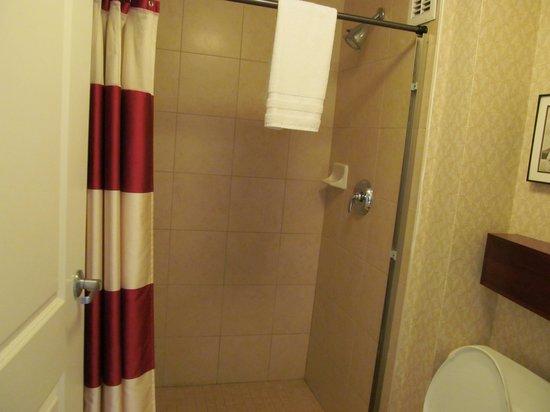 Residence Inn Dover: Bathroom 2 with shower