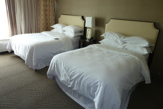 Sheraton Pleasanton Hotel: room 501