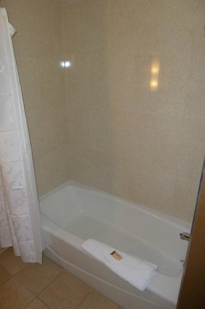 Sheraton Pleasanton Hotel: shower