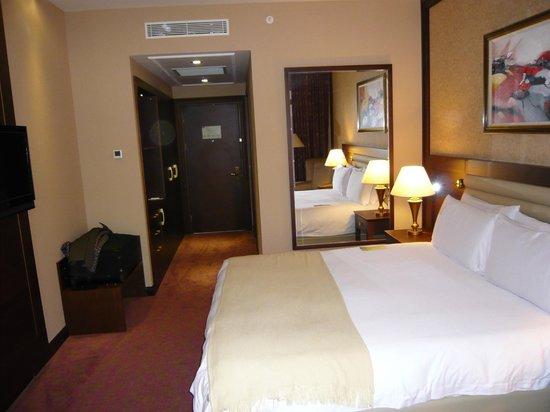 Wellborn Luxury Hotel: Premium room