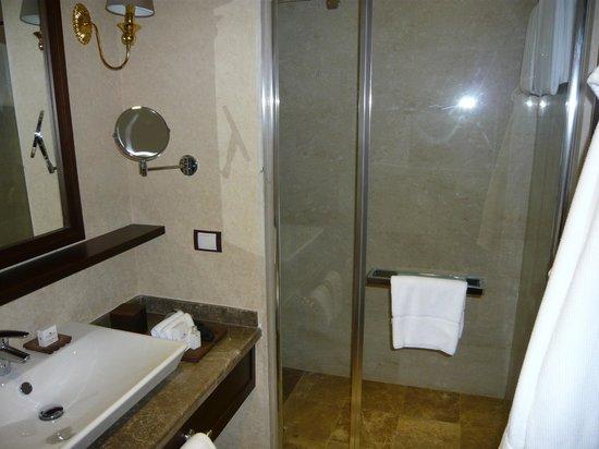 Wellborn Luxury Hotel: Bathroom has walk in shower but no bath