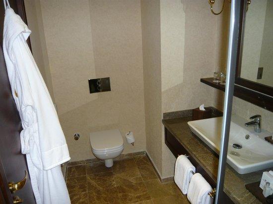 Wellborn Luxury Hotel: Premium Room Bathroom...compact