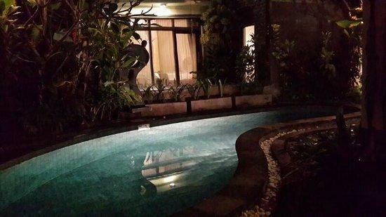 The Bali Dream Villa & Resort: Private pool 2 bedroom villa