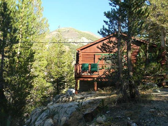 Tioga Pass Resort: cabin 9 with mountain in background