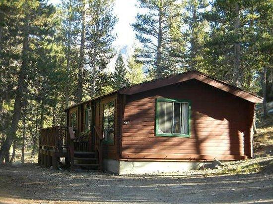 Tioga Pass Resort: cabin 10