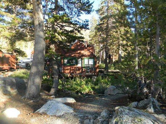 Tioga Pass Resort: cabin 6