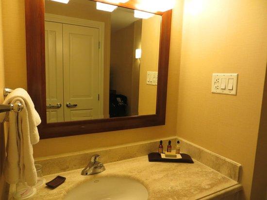 Toronto Airport Marriott Hotel: Entrée de la salle de bain