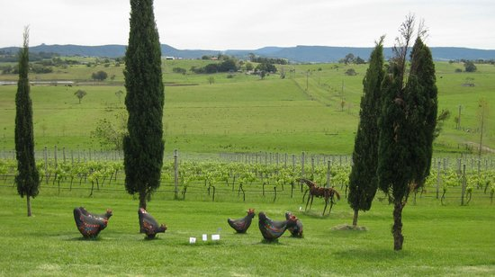Cupitt's Kitchen: View from the winery - ceramic chooks in foreground