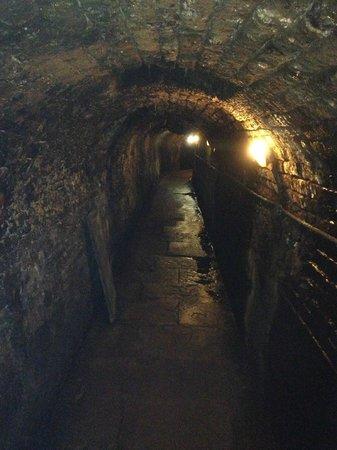Cave historique des hospices civils de Strasbourg: Wine Cellar Tunnel