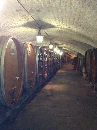 Cave historique des hospices civils de Strasbourg: Where has dad gone