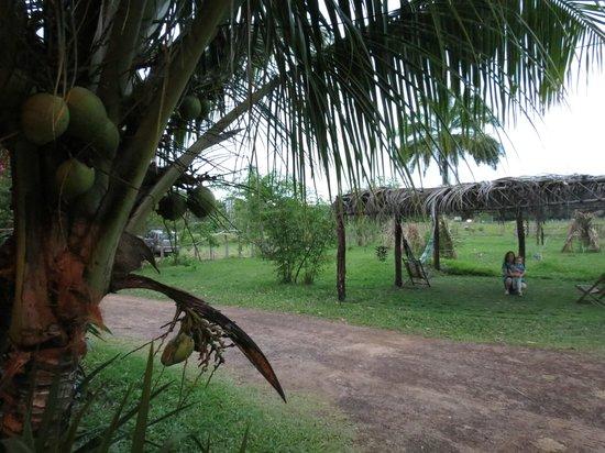 Ambiente r stico e agrad vel picture of cabana da empada for Ambiente rustico