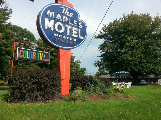 Maples Motel : This sign makes me happy.