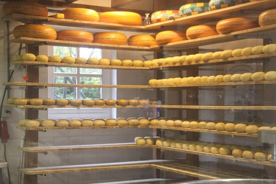 Irene Hoeve Clogs and Cheese Shop: Exhibition