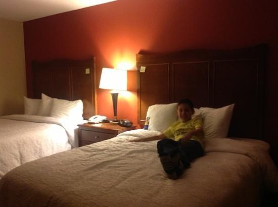 Hampton Inn & Suites El Paso-Airport : a descansar despues de un dia ajetreado!!