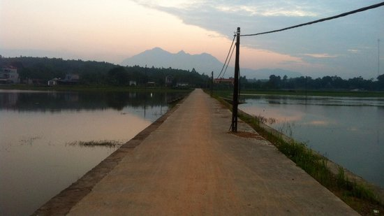 Moon Garden Homestay: Cycle around the area
