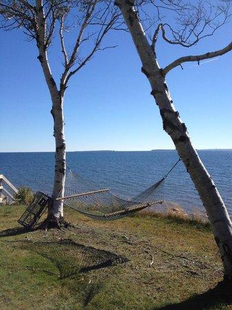 Sea Parrot Ocean View Manor: It's hammock time.