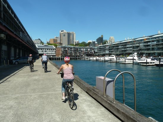 Bonza Bike Tours : Biking along the promenade