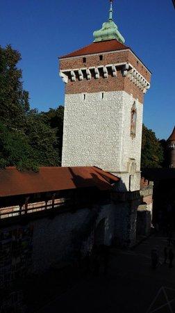 Hotel Polski Pod Bialym Orlem : Florian Gate