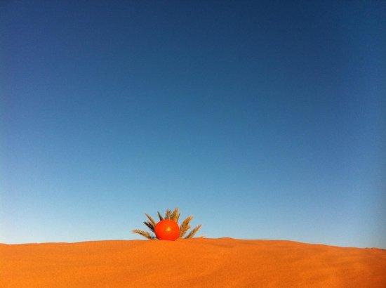 Ouednoujoum Ecolodge: Désert orange by Hassan ( désert rose of Sting )