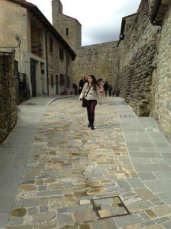 Montemignaio, Italy: Per le vie del centro