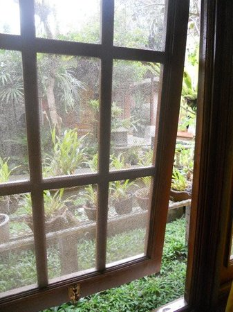 Ketut's Place: quiet and green