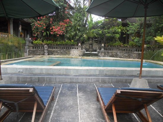Ketut's Place: the pool is so beautiful