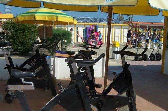 Club Family Hotel Executive: Novità 2014...Bagno Marconi con zona Fitness, Wi Fi, spiaggia per i Vostri amici a 4 zampe.....