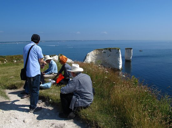 Old Harry Rocks: on top the cliffs