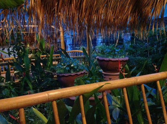 Magical Garden Cafe: Tree,plants and flowers everywhere