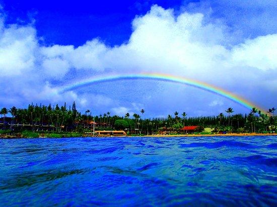 The Napili Bay: Rainbow Over Napili Bay