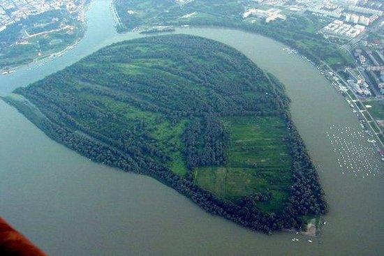 Great War Island : War Island