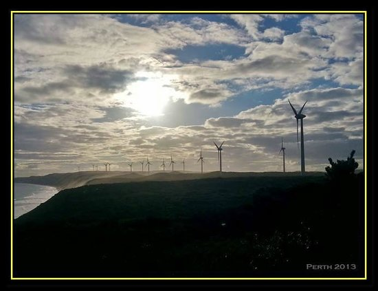 Albany Wind Farm: Turbines against the setting sun