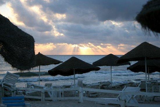 Royal Beach Hotel: Beach