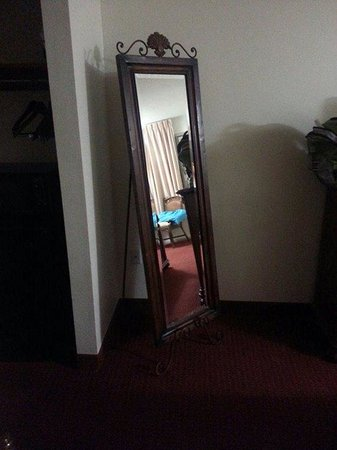 Days Inn Brooksville: what an awesome mirror for a hotel room