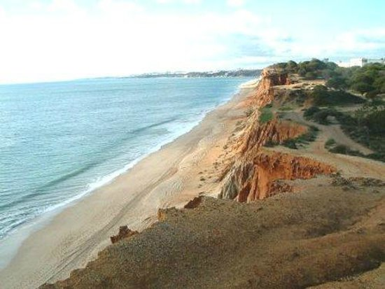 Praia da Falesia (Steilküstenstrand): Treks on top of the Sand Cliffs,