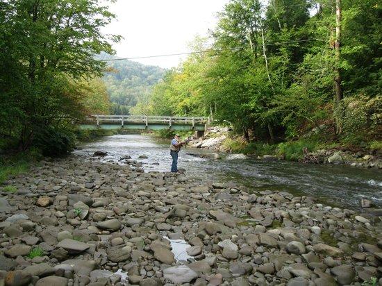 Beaverkill Valley Inn: Trout fishing