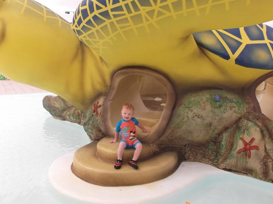 Aparthotel Rosa del Mar: toddler pool
