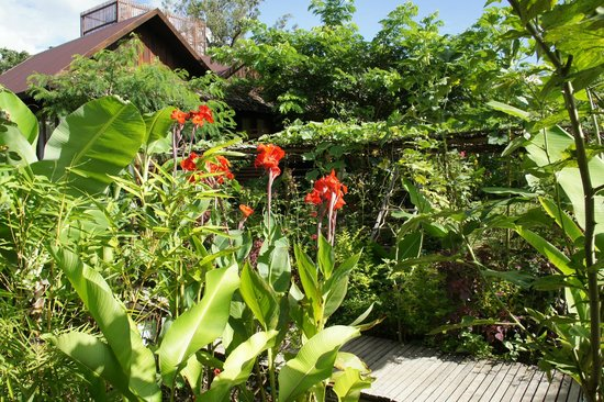 La Maison Birmane: the garden