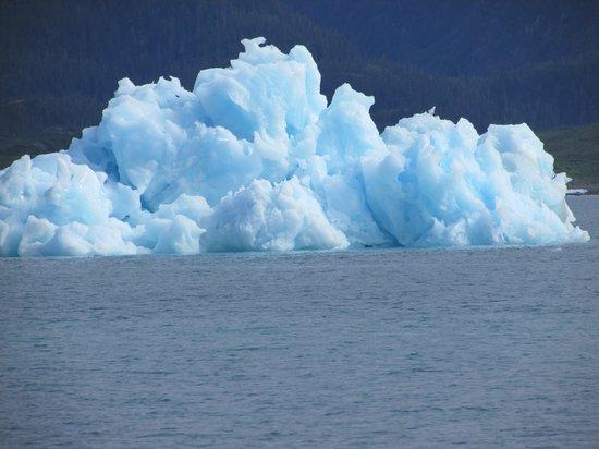 Columbia Glacier: Mears iceberg