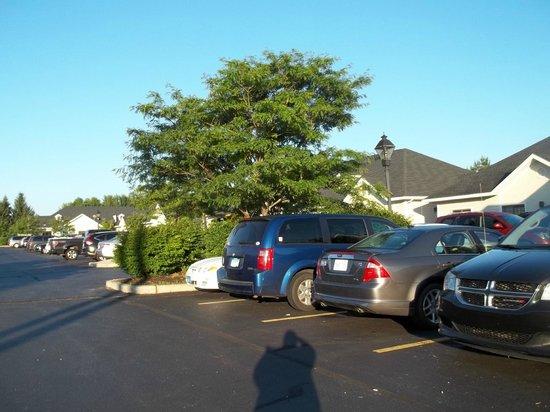 Super 8 Freeport Brunswick Area : The whole shebang